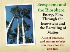 Ecology: Energy Flow and Recycling of Matter Review PowerPoint Questions  and Answers.  This PowerPoint consists of 86 slides of questions and answers and provides an excellent review for the chapter test. I use this review PowerPoint after completing the material in this unit: Ecosystems and the Biosphere Energy and the Recycling of Matter PowerPoint and Notes.