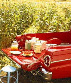 Pick-up truck picnic.  Fun in the Summer