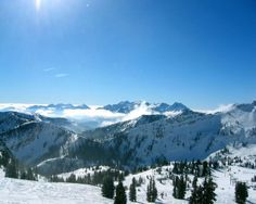 Snowbird, Utah. You'll be hard pressed to find another area with consistent snowfall and enough terrain for a lifetime of visits.  The snow is deep, soft and forgiving.  It's no wonder the locals cherish this place.