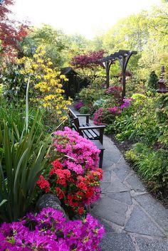 #garden with stone path
