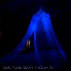 glow in the dark star canopy