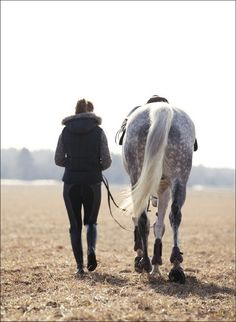 want this shot with my horse