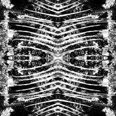 black & white / digi