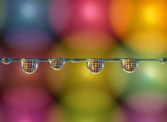 Coloured ring drops