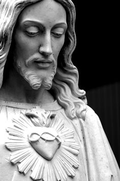 Most Sacred Heart of Jesus have mercy on us.