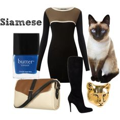 How to dress like your cat... Siamese Cat Fashion