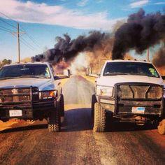 White Dodge Cummins Diesel Twins - Twin Trucks, like Jake and I wanted to make! :)