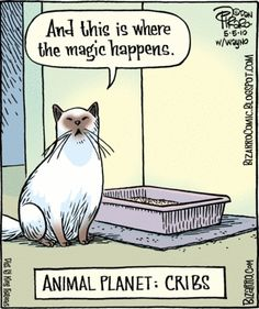 Animal Planet Cribs