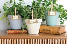 Save yourself a trip to the grocery store with your own indoor herb garden!