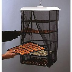 Hanging food dehydrator~great for preserving without electricity.