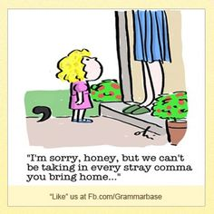We can't be taking in every stray comma you bring home...
