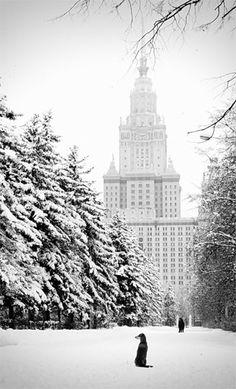 Snowy New York City.