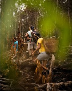 Indian Ritual - Gaia Amazonas