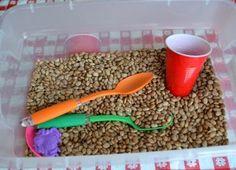 Beans 001