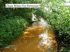 we need clean water for everyone