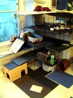 "Cube type DIY cages can make for a roomy space when your space is limited. (just make sure to use the cube grids that the 1"" grid spaces otherwise, a bunny can get his head stuck in the grids are spaced larger."
