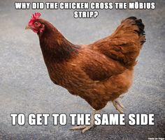 Why the chicken crossed the Moebius strip.