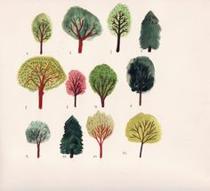 12 trees, by Angela Dalinger