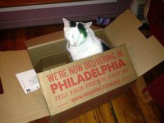 Carter loves his #FreshDirect boxes! freshdirect box