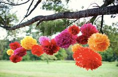 fiesta party, pom poms, hanging decorations, birthday parties, paper flowers, tree branches, birthday party decorations, mexican fiesta, cinco de mayo