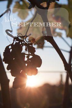 hello september . . .