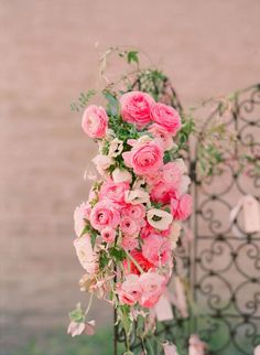 Pink Persian Buttercups
