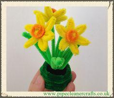 Pipe cleaner daffodils