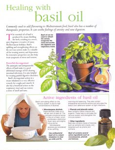 Healing with basil oil