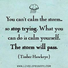 You can't calm the storm...