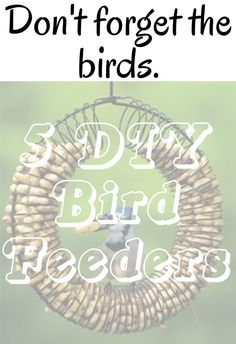 diy home sweet home: Dont forget the birds. 5 DIY bird feeders