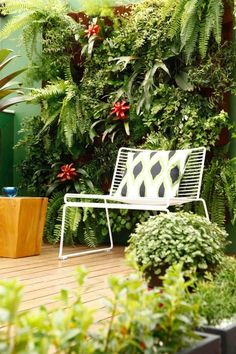 Lots of all green plants and a modern white outdoor chair on a patio in an apartment in Brazil