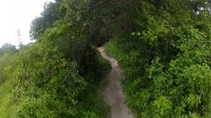 Mountain Biking at Alafia River State Park via @justinfricke #teamsierra #trailtime #mtb #singletrack