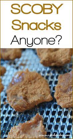 SCOBY Snacks - www.ohlardy.com