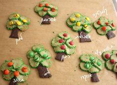 עוגיות עצים