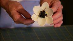 Video: How to Make Sugar Flower Anemones