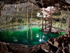 Cenote Maya, Yucatan Mexcio  Was the best part of our excursion...so amazing to swim in there!!!