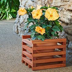 Build a cedar-stained wooden planter in a single weekend. Add your favorite flowers once you're done!