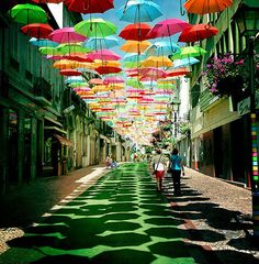Colorful umbrellas over the streets of Portugal
