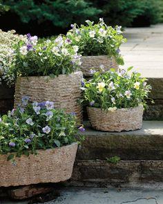 Put flower pots in wicker baskets