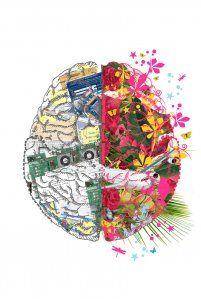 left~riGht brain