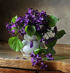 Violas in a very casual arrangement.