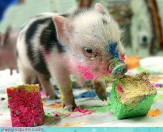 Micro Piglet painting. I WANT ONE!