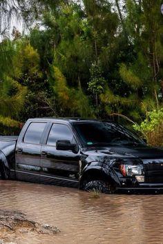 Black Ford Raptor http://estabrookford.com/Ford-Dealer-Serving-Gulfport-MS/