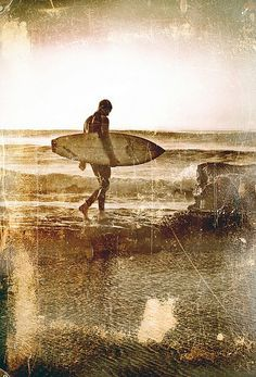 learn to surf of course!