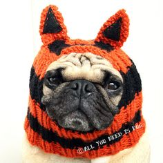 Tiger Dog Hat by jessicalynneart on Etsy, $24.00
