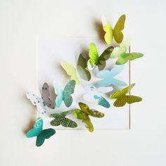 .encore des papillons 3D