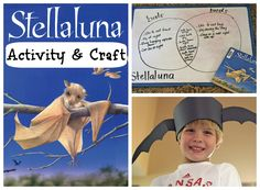 Stellaluna Activity & Craft