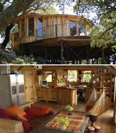 sweet trees, dream homes, architectur, tree houses, dream life