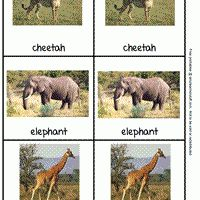 Zoo Animal Picture Cards, free