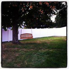Backyard Tree Swing Ideas On Pinterest Porch Swings